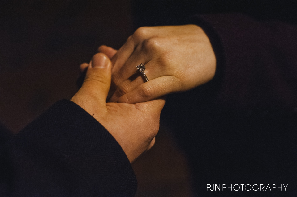 PJN Photography Meghan & Nick Proposal Canfield Saratoga-9