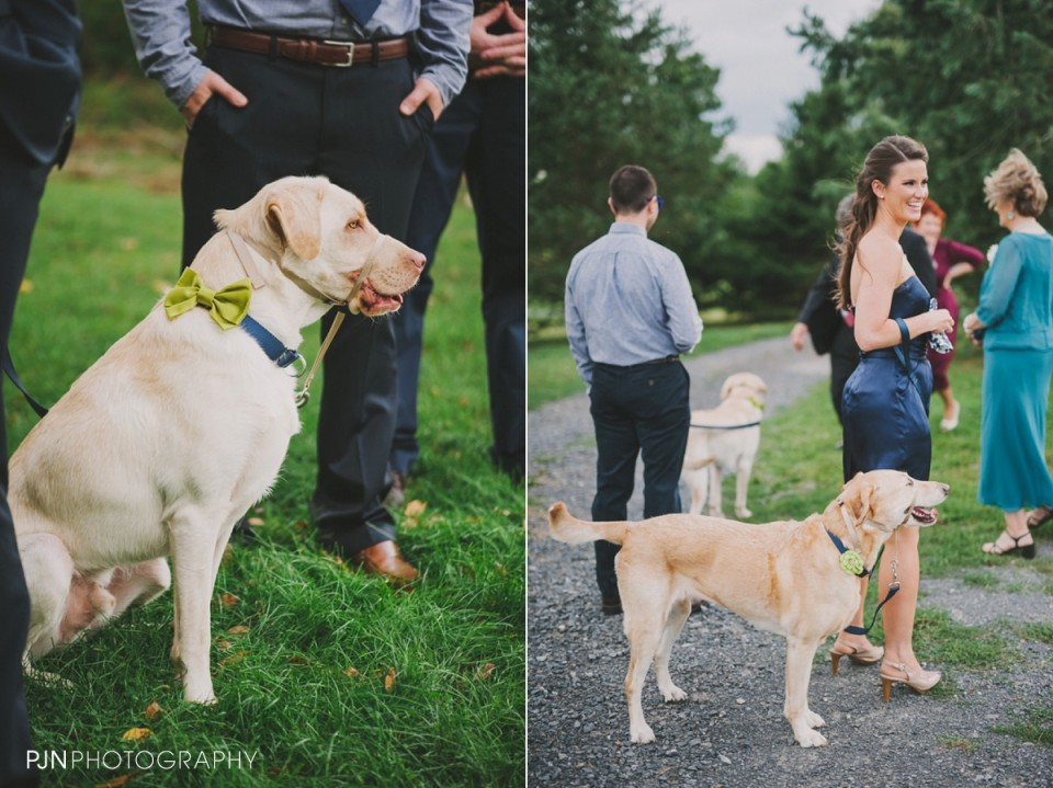 PJN Photography Colleen & Steve's Art OMI Ghent Upstate New York September Wedding-063